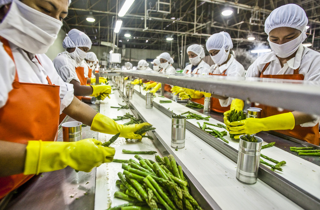 Is The Food Industry The Way To Turn?